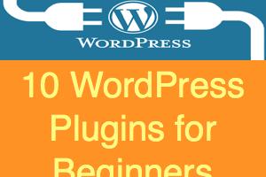 10 Plugins for WordPress Beginners