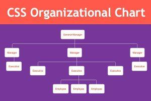 CSS Organizational Chart