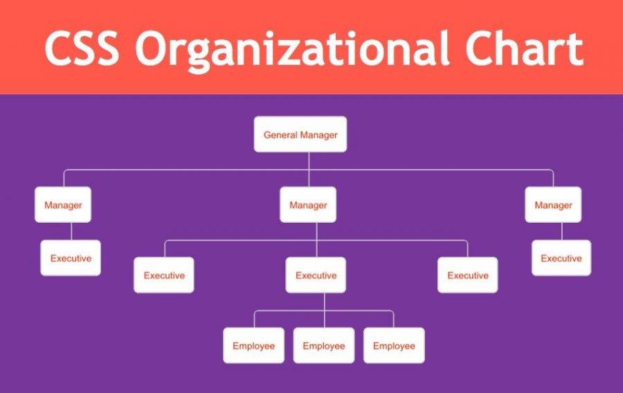 How to Add Organization Chart in Weebly Site?