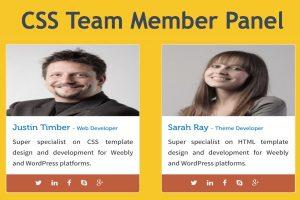 CSS Team Member Panel