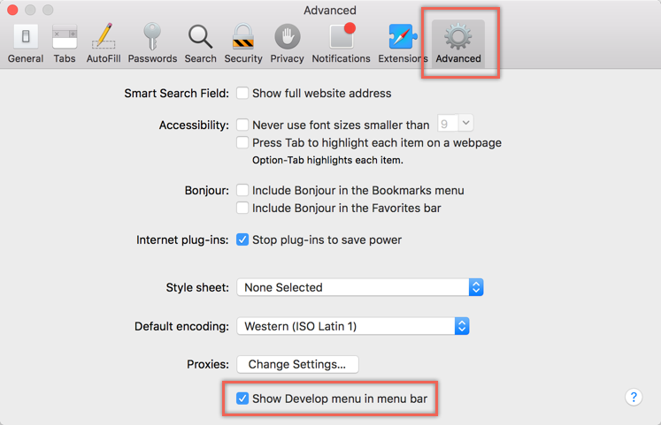 Enable Develop Menu in Safari