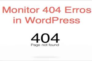 Monitor 404 Errors in WordPress