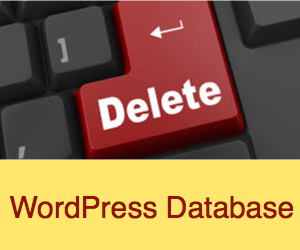 How to Delete MySQL Database in cPanel WordPress Hosting?