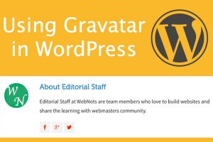 How to Use Gravatar in WordPress?