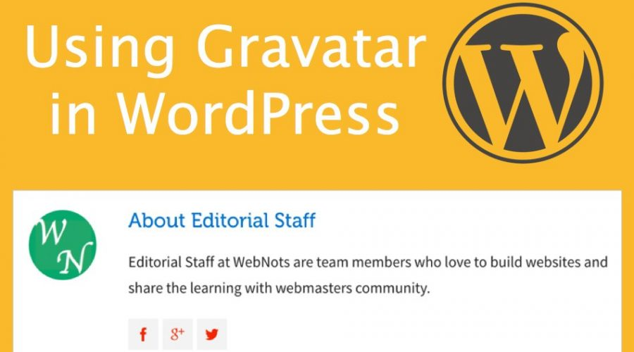 How to Use Gravatar on WordPress Site?