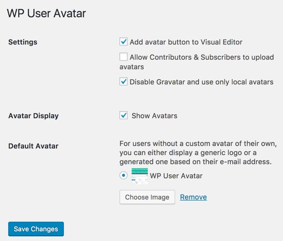 Using Custom Avatar in WordPress