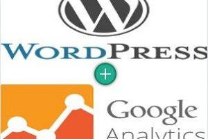 Add Google Analytics in WordPress Site