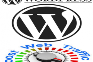 Improve WordPress Site Traffic