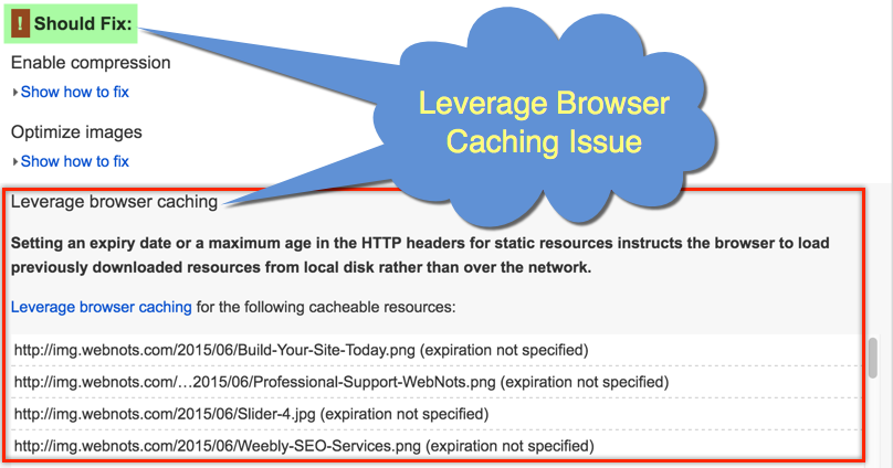 Leverage Browser Caching Issue in Google PageSpeed