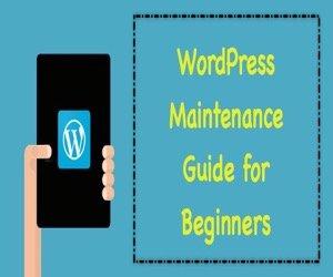 5 WordPress Maintenance Tasks Every Bloggers Should Do