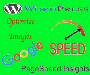 Fix WordPress Optimize Images Issue in Google PageSpeed