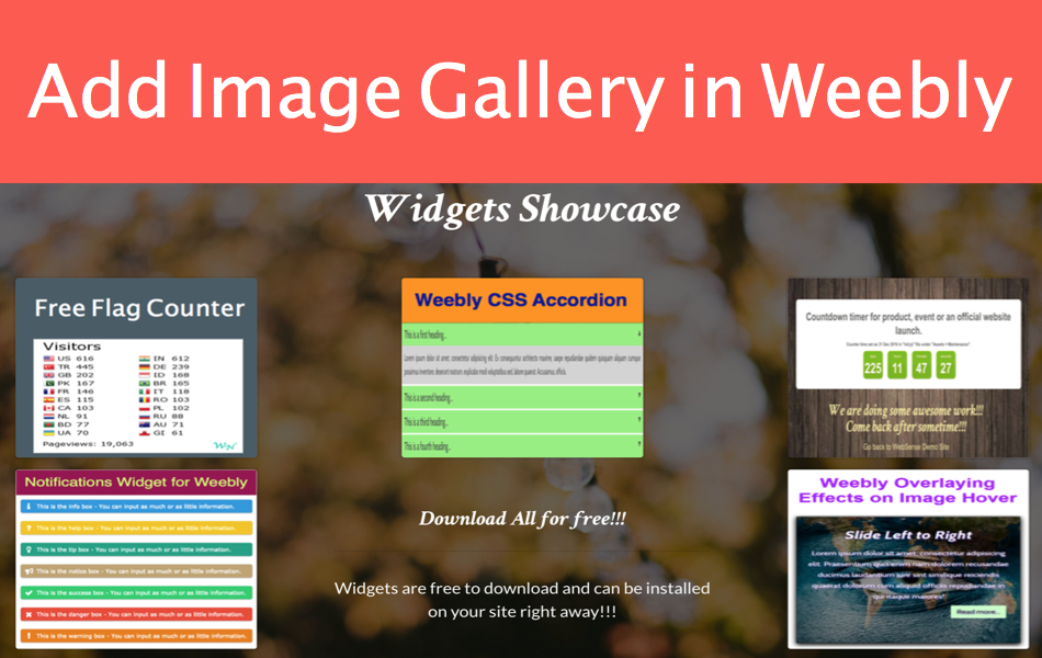 How to Add Image Gallery in Weebly Site?