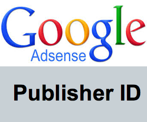 All You Should Know About AdSense Publisher ID » WebNots