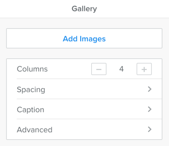Weebly Gallery Element Options