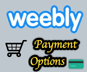 Disney store online payment options