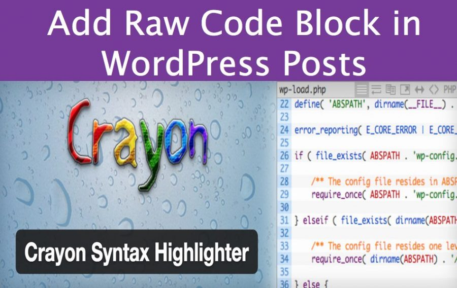 Add Raw Code Block in WordPress Posts