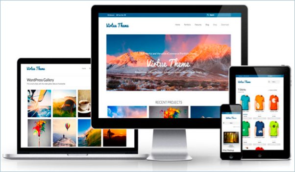No 7 – Virtue WordPress Theme