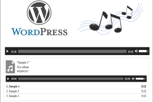 Add Audio Player in WordPress