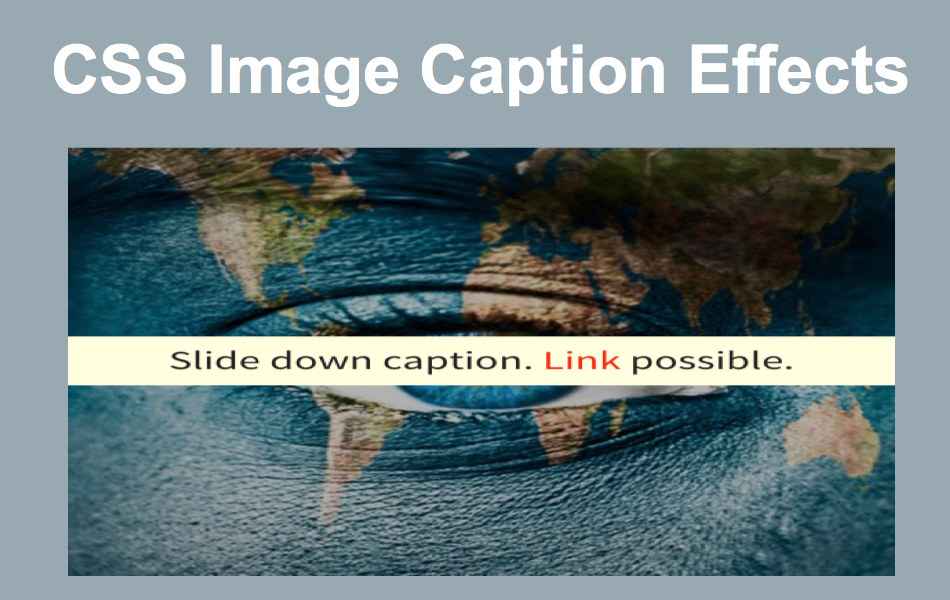 How to Create CSS Image Caption Effects?