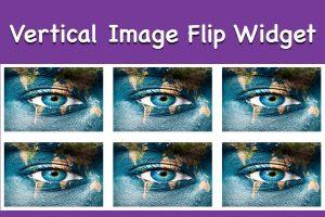 Vertical Image Flip Widget