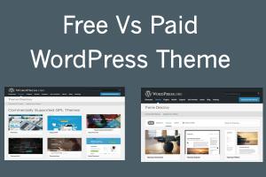 Free Vs Paid WordPress Theme
