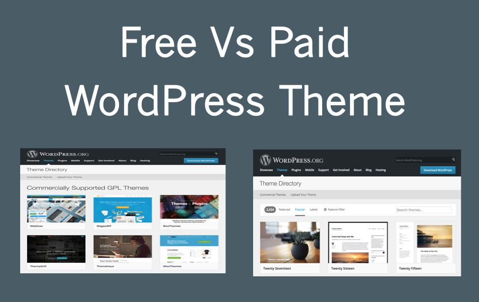 Free Vs Paid WordPress Theme