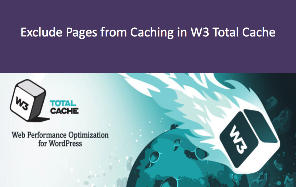 Exclude Pages and Directories from Caching in W3 Total Cache