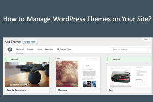 How to Manage WordPress Themes on Your Site?