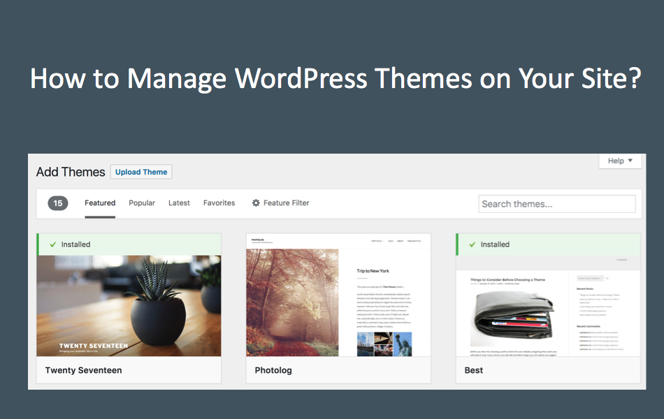 How to Manage WordPress Themes?