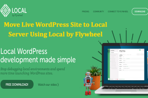 Move Live WordPress Site to Local Server Using Local by Flywheel