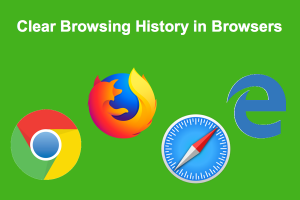 Clear Browsing History in Browsers