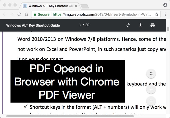 Chrome PDF Viewer