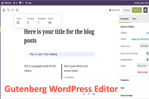 Gutenberg WordPress Editor Review