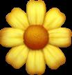 Daisy Symbol
