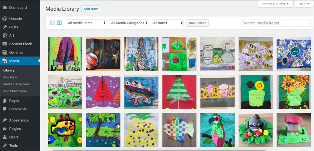 Media Library Showing Images