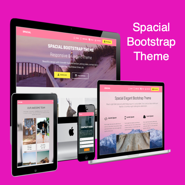 Spacial Free Bootstrap Theme
