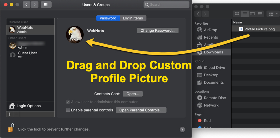 Drag and Drop Custom Profile Picture