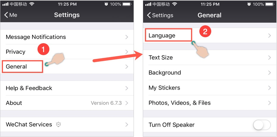 Go to Language Section in WeChat