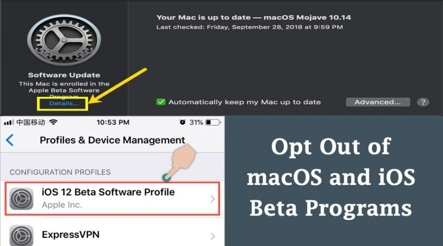 How to Opt Out of iOS and macOS Beta Programs?