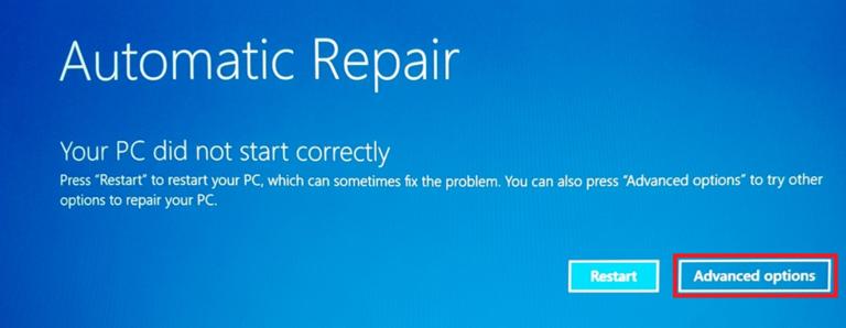 Auto Repair Screen Advanced Options