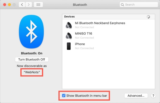 Bluetooth Enabled in Mac