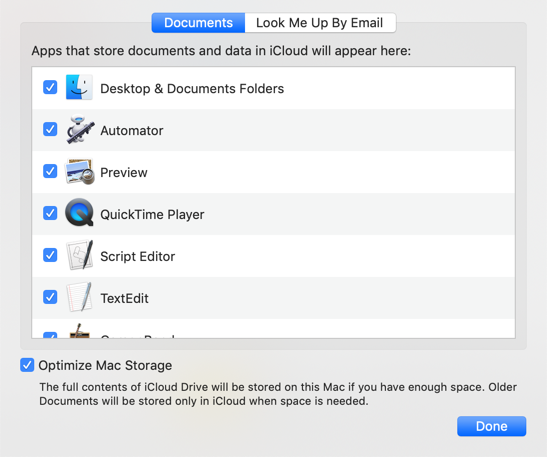 Choose Items for iCloud Sync