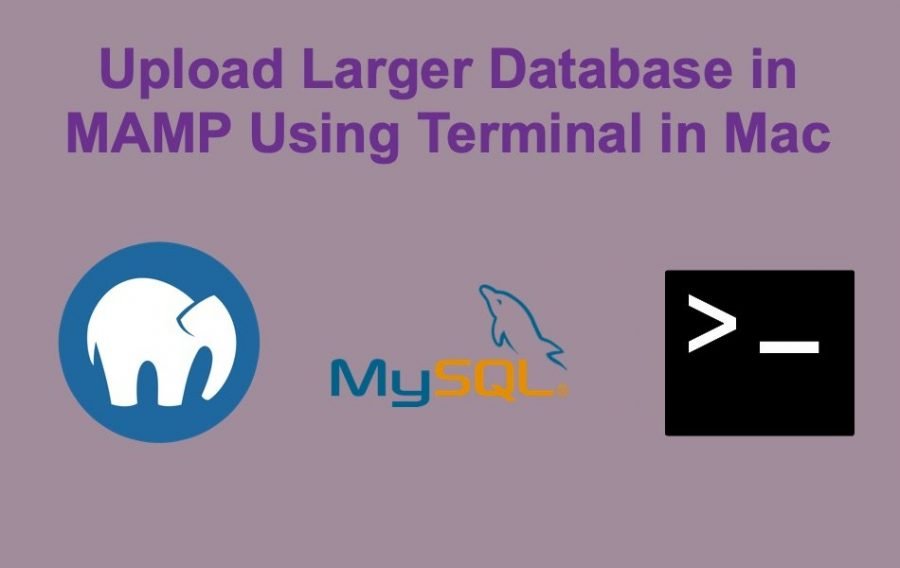 Upload Larger Database in MAMP Using Terminal in Mac