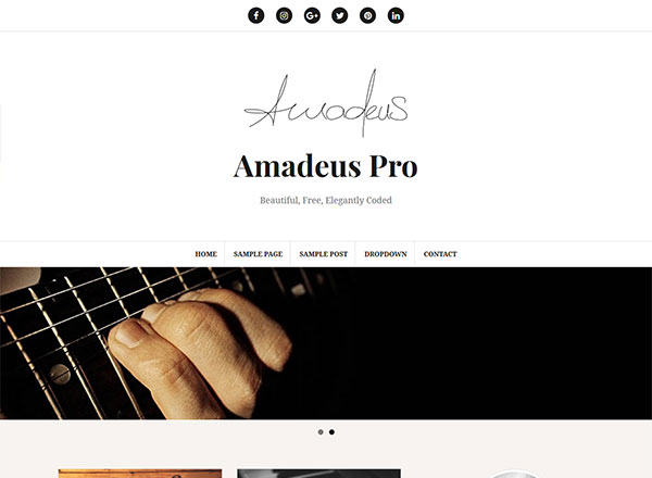 Amadeus Pro WordPress Theme