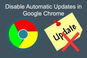 Disable Automatic Updates in Google Chrome