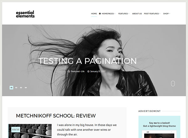 Essential Elements WordPress Theme