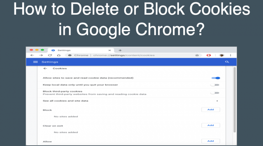 How to Block or Delete Cookies in Google Chrome?