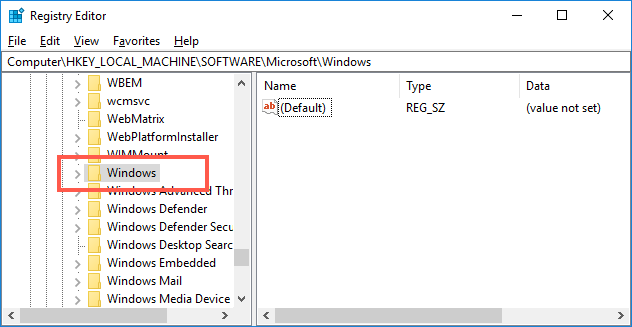 Registry Editor Windows Section