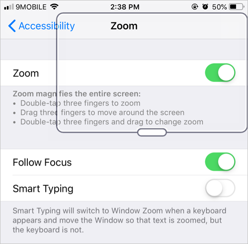Zoom Setup in iPhone