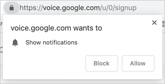 Allow Google Voice Notifications